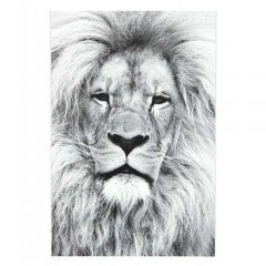 Magneetposter LION