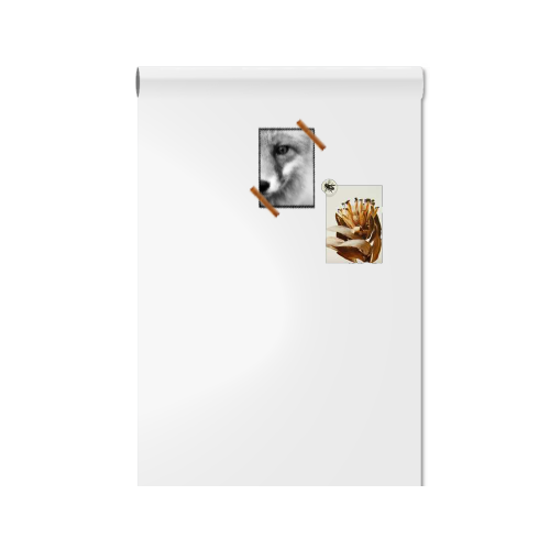magneetbord_magneet_whiteboardbehang_wit