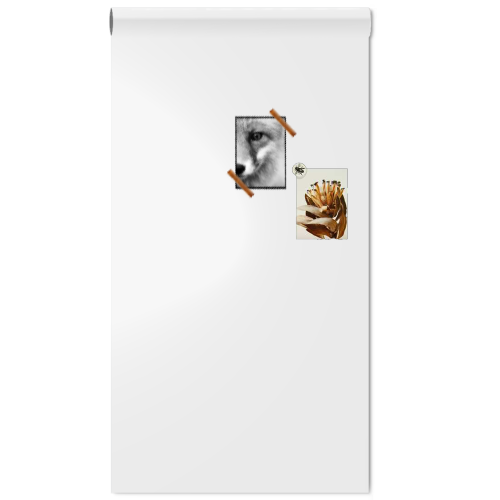 magneetbord_magneet_whiteboardbehang_wit_50x150